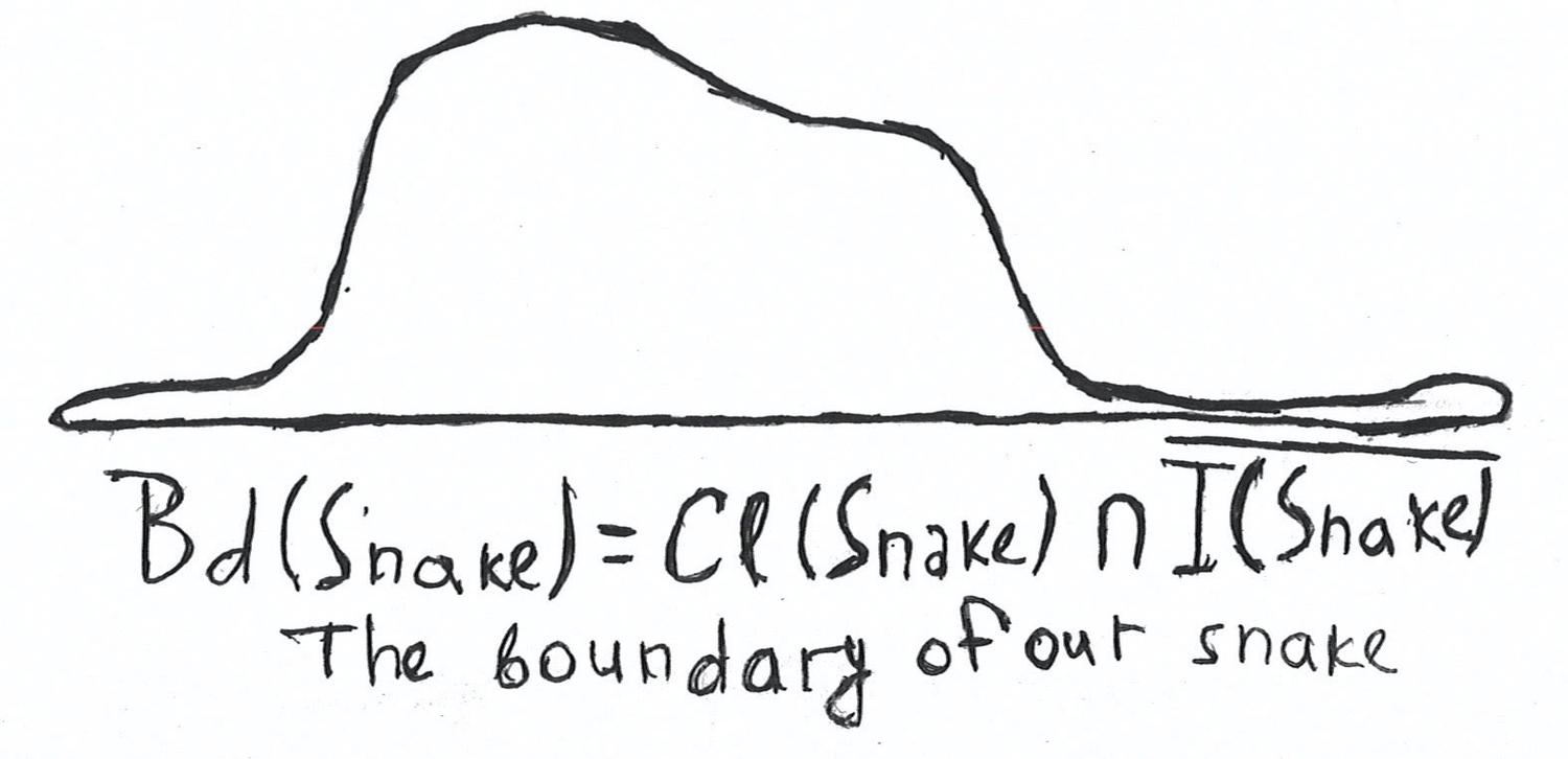 The boundary of the snake